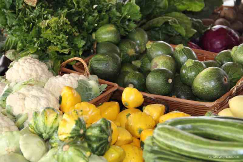 Eat Your Vegetables -squash