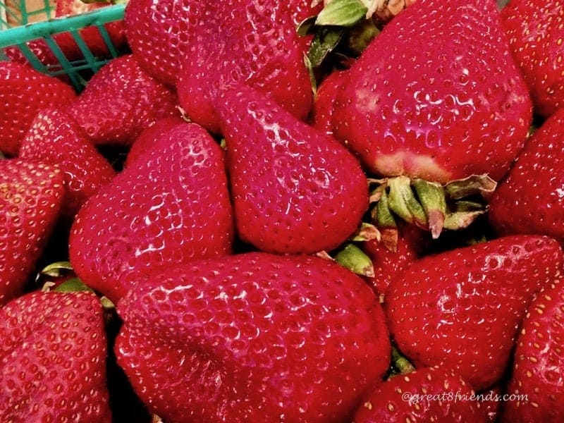 strawberry stand just strawberries