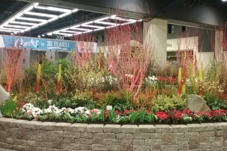 Northwest Flower Garden Show preview 2-6-17 photo by Carole Cancler