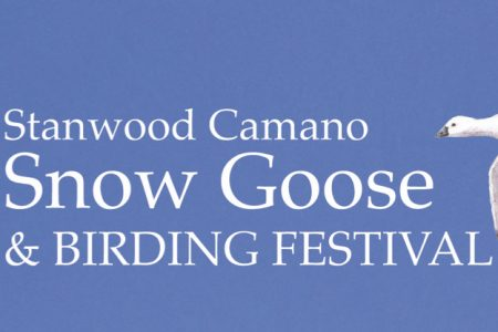 Stanwood-Camano Snow Goose and Birding Festival banner