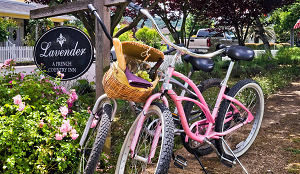 bed and breakfast bikes