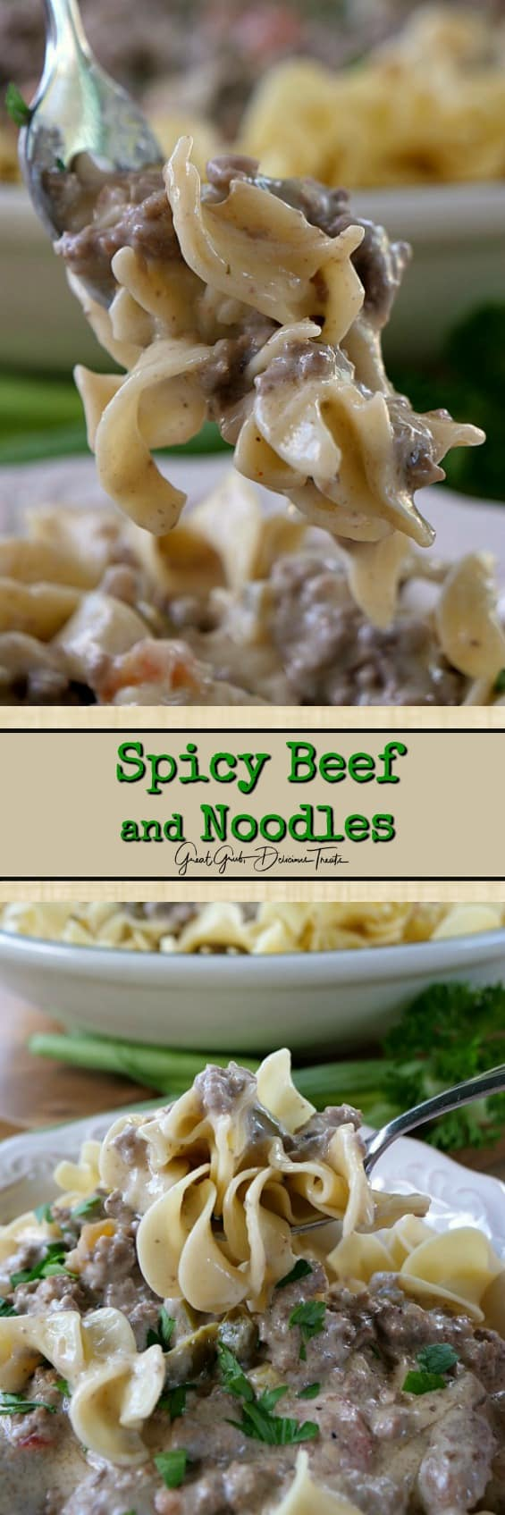 Spicy Beef and Noodles