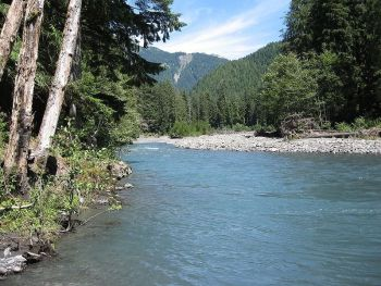 800px-Queets_river