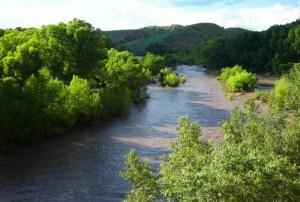 Gila-Conservation-Coalition