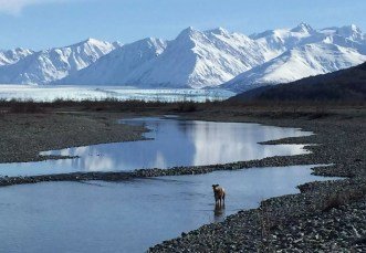 Alaska_Broadband