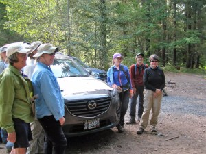 Broads Assisting with Cascade Forest Conservancy Survey