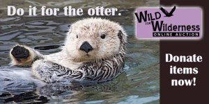 Otter_Auction_Email_Pic