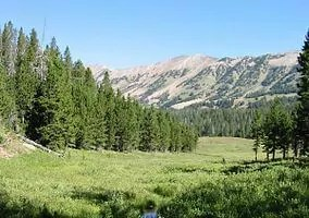 284px-Gallatin_National_Forest