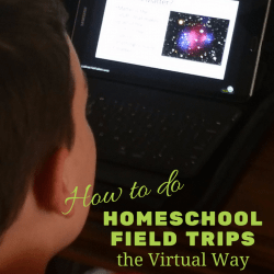 How to Offer Homeschool Field Trips the Virtual Way