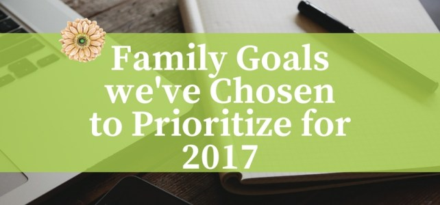 Family Goals we've Chosen to Prioritize for 2017