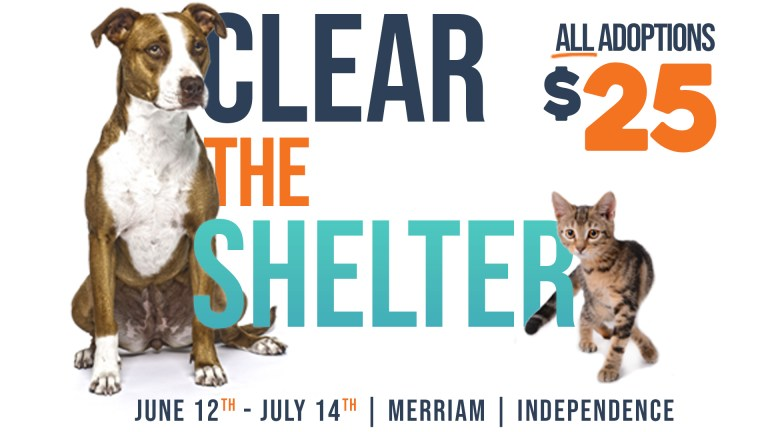 Clear The Shelter $25 Adoption Special
