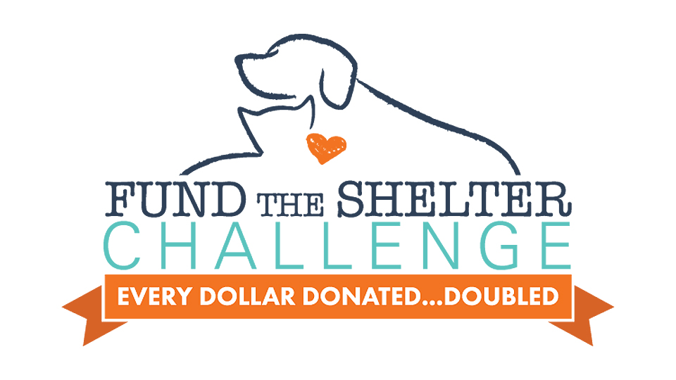 Fund The Shelter