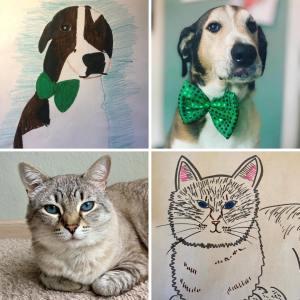 Bad Pet Drawing