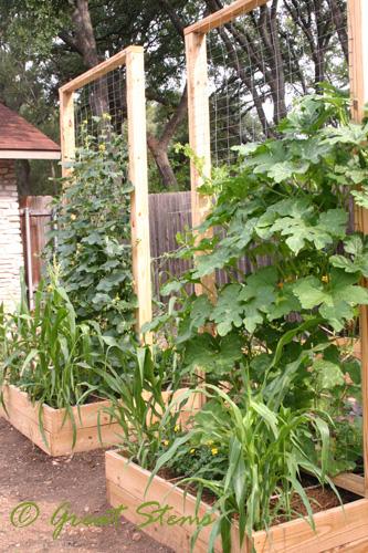 Square-foot gardening at greatstems.com