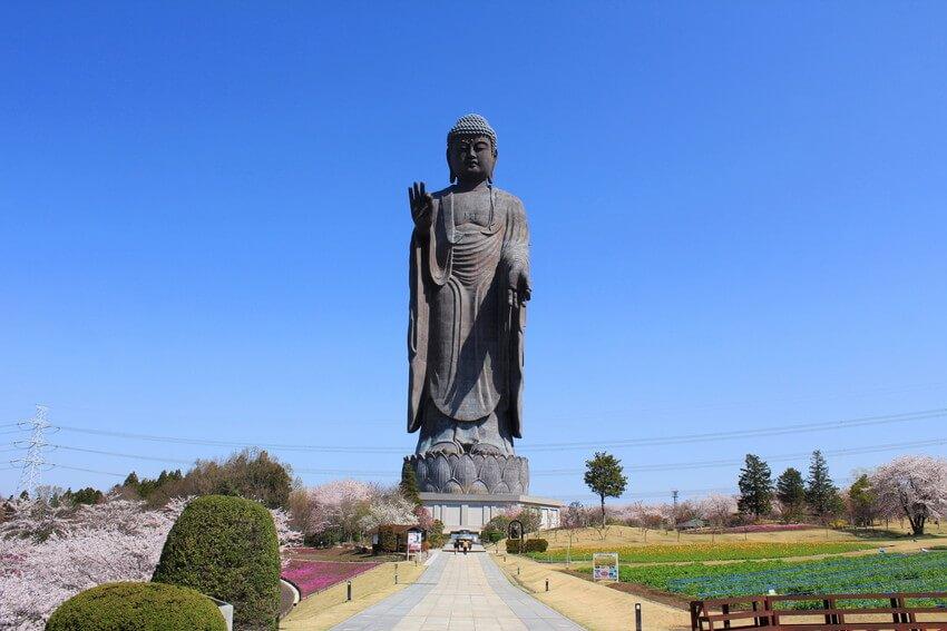 Ushiku Daibutsu Top 10 Tallest Statue in the World