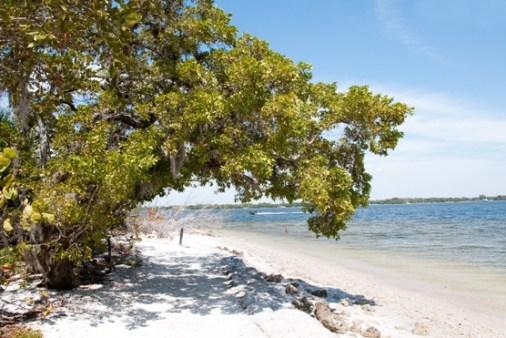 De Soto, Florida