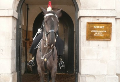 Horse guard in front of Downing Street NOT Buckingham Palace