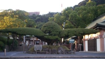 Kyushu Island of Japan
