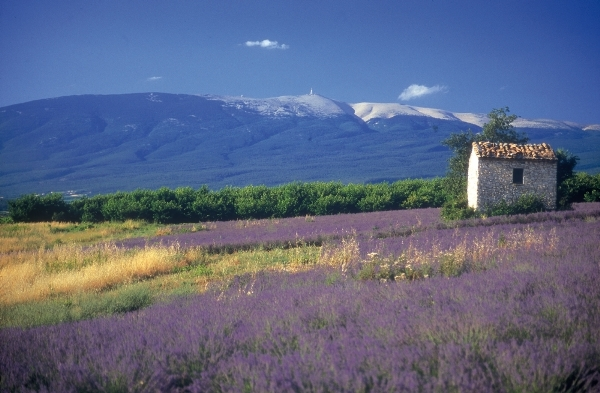 The stunning scenery of Mont Ventoux in Vaucluse