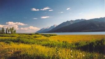 Yellowstone National Park vista