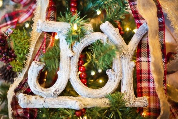 celebrate-the-joy-of-the-holiday-season