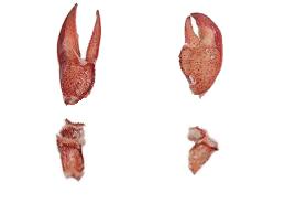 KC Lobster Meat