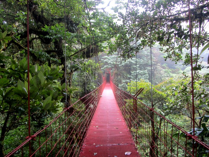 Monteverde, Hanging Bridge, Costa Rica