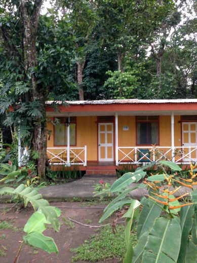 Tortuguero National Park, Exploradores Outdoors, Costa Rica