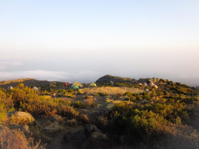 tents on Kilimanjaro, Tanzania