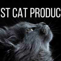 10 Must Have Products for all Cat Lovers