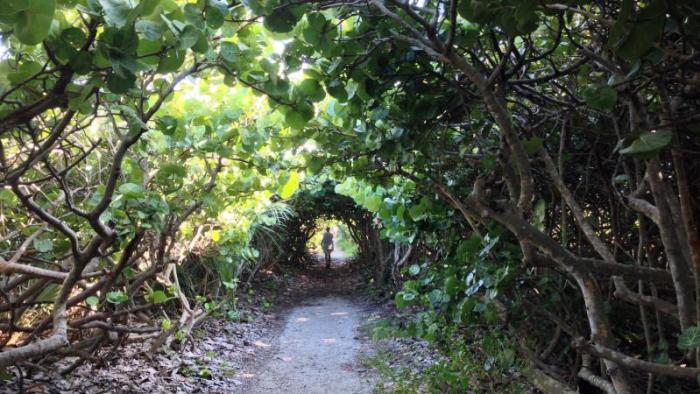 John MacArthur Park, Singer Island, Palm Beach
