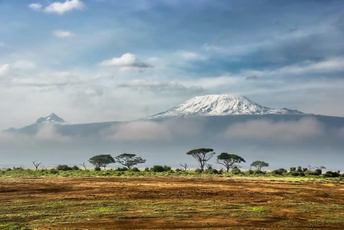 kilimanjaro, africa, safari