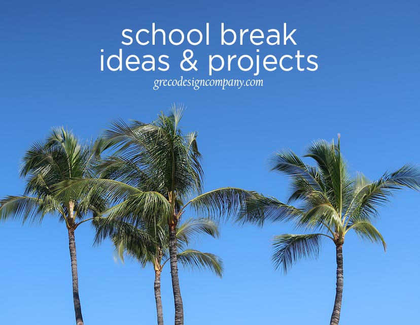 school break ideas & projects