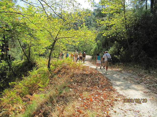 trail-on-thassos