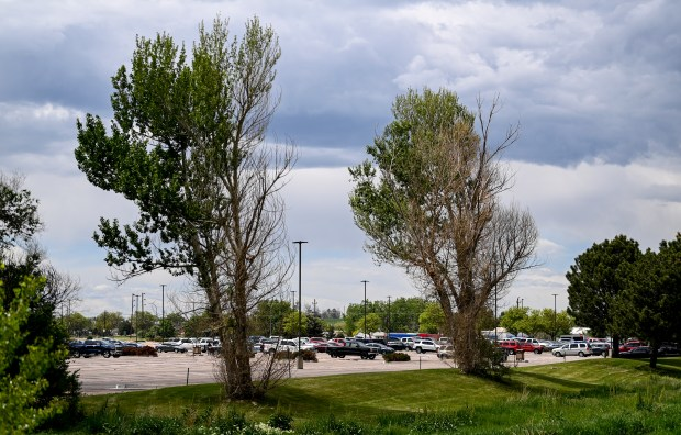 GREELEY, CO - JUNE 01:The parking lot stands emptier than usual at the JBS Greeley Beef plant in Greeley June 1, 2021. A cyberattack caused the cancelation of two shifts at the plant Tuesday, according to Marcela Salazar, a spokesperson for UFCW Local 7. (Alex McIntyre/Staff Photographer)
