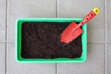 voglio far crescere un orto in terrazzo