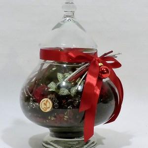 Giardini in vaso - Collezione Natale