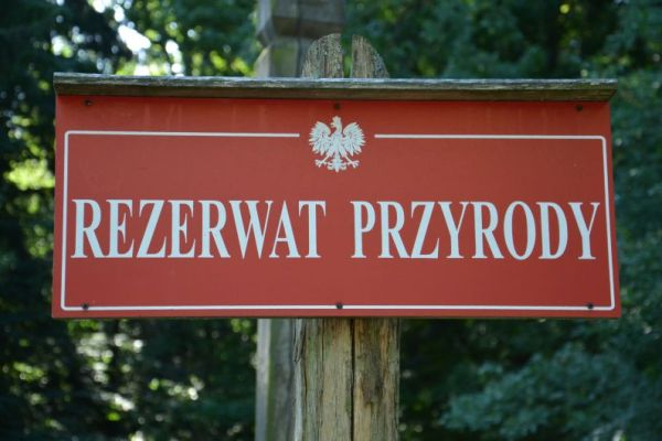 ochrona przyrody w Polsce rezerwat przyrody Hajnowka