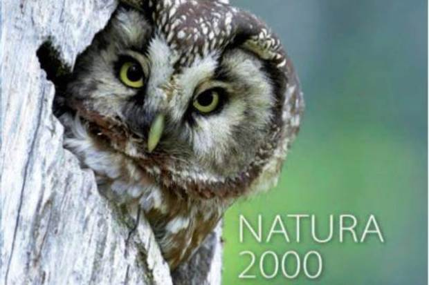 Protejarea siturilor Natura 2000