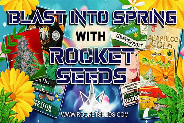 Rocket Seeds - Blast Into Spring With Rocket Seeds Facebook Banner 1200x628
