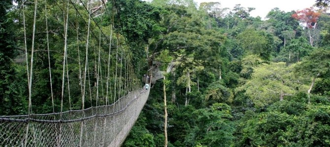 Ghana's government launched 1.2 billion dollars eco-tourism project