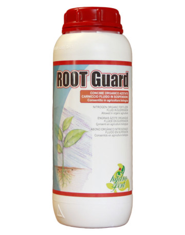 Root-Guard