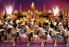 Elephants at Phuket Fantasea Show