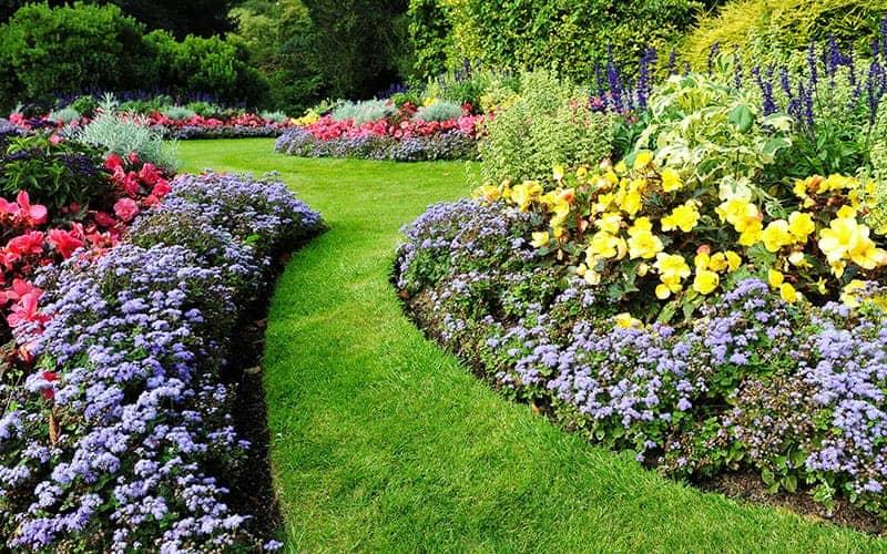 Beautiful Flowerbed ideas