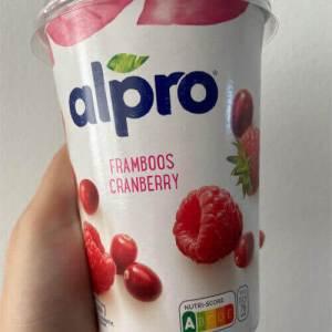 Vegan producten proberen met Linsey #3 Yoghurt editie