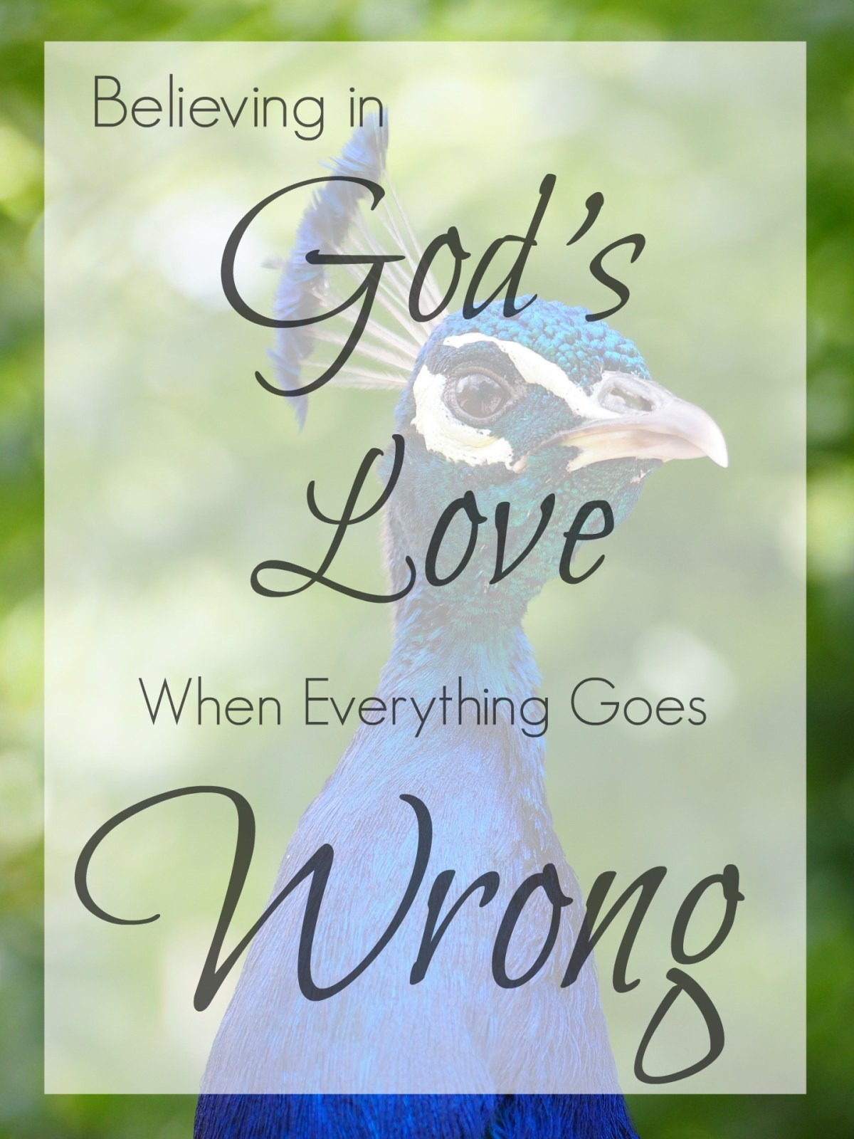 Vanity, Faith, and Hard Times: Believing in God's Love When Everything Goes Wrong