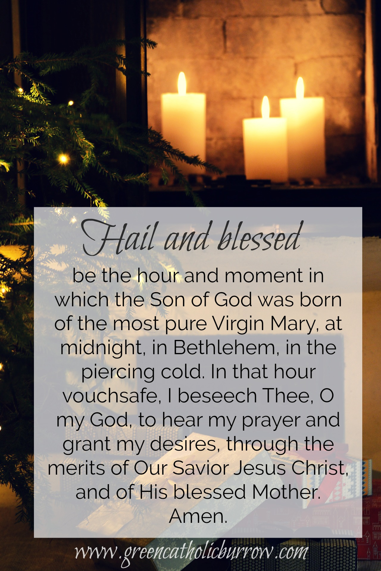 graphic about St Andrew Novena Printable called St. Andrew Xmas Novena Inexperienced Catholic Burrow
