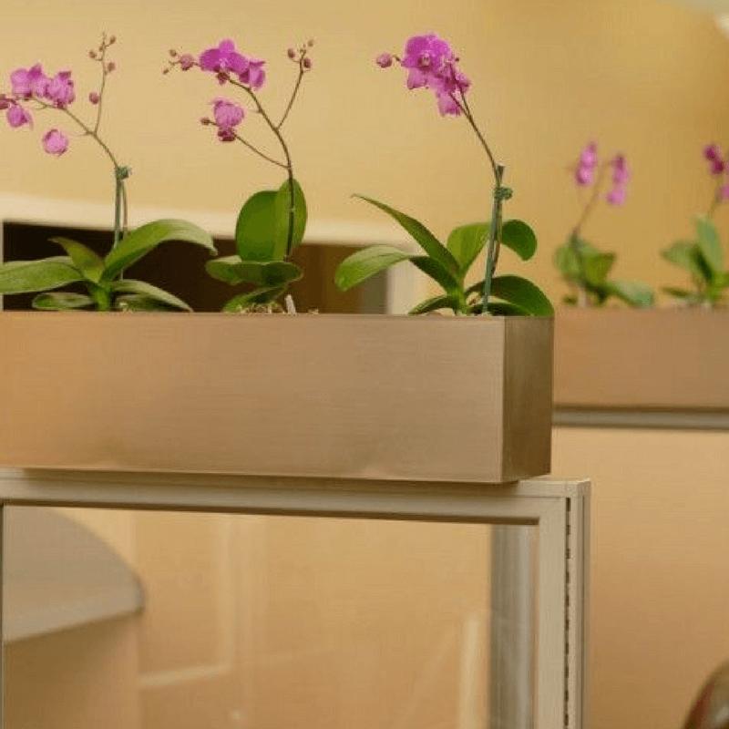 Office Cubicle Decoration Ideas