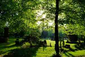 green cremation