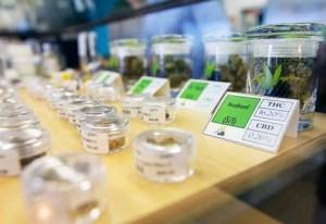 california marijuana dispensaries